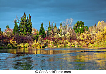otoño, ocaso, salvaje, siberiano, Taiga