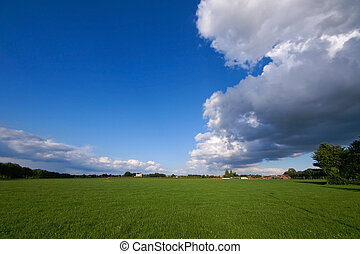green pasture and thunder - green pasture with big...