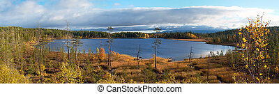 Small lake on the tundra Autumn landscape Lapland