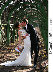 Newly-married couple - The groom and the bride walk in park.