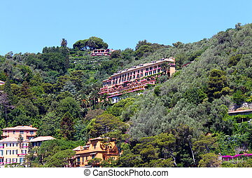 The Villa in the trees