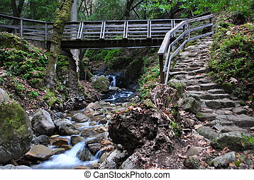 Footbridge, Stone Steps, and Stream - Footbridge, Stone...