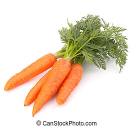 Carrot vegetable with leaves isolated on white background...