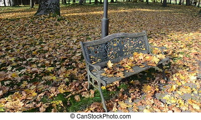 park bench autumn leaves