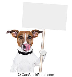 banner dor - dog holding an empty placard and licking