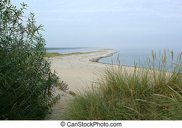 untouched nature - untouched dunescape on the isle of Sylt...