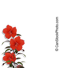 Tropical Hibiscus Flowers border - Image Composition for...