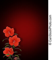 Red Hibiscus on Black Background - Image Composition for...