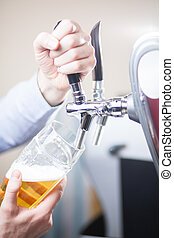 barman draft beer - glass being filled with draft beer by...