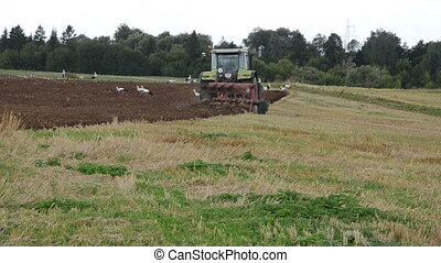 tractor plow field stork - agricultural tractor work plow...