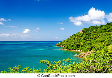 Wild Green Coastline - Lush tropical coastline of Caribbean...