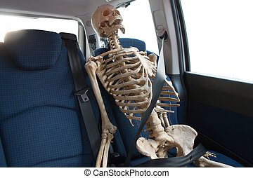 Skeleton sitting in car - Photograph of skeleton, sitting in...