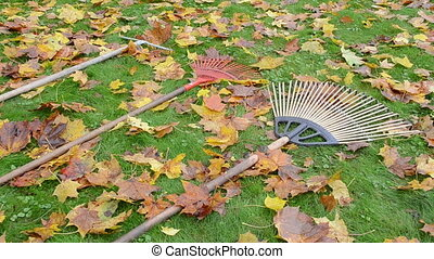 leaf raker worker take - three leaf rake tool lie on meadow...