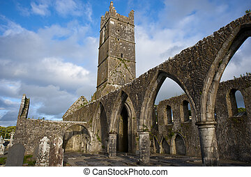 Claregalway Friary - celtic ruins and cemetery of...