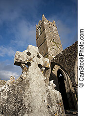Claregalway Friary celtic ruins