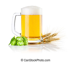 Mug fresh beer with Green hops and ears of barley isolated on a white background