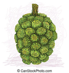 pandanus fruit - closeup illustration of pandanus fruit...