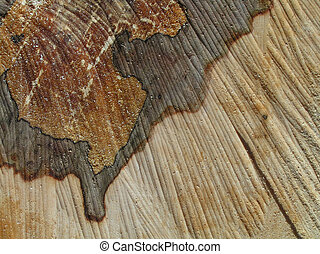 Sawn wood abstract - Close-up of chemical stain on sawn wood