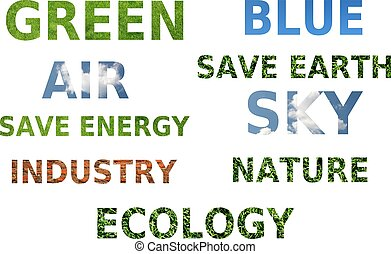 word's concept of ecology awareness
