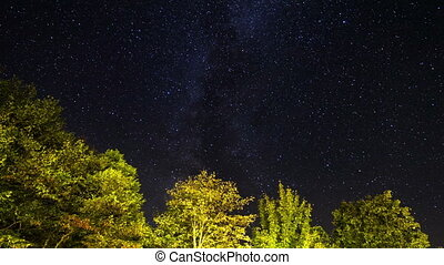 Plitvice stars - Beautiful full HD starry night time lapse...