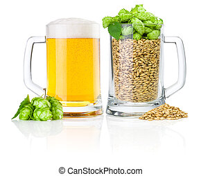 Two Mug: fresh beer and full of barley hops, isolated on...