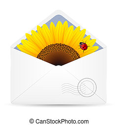 Open envelop with sunflower and ladybird. Vector...