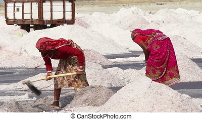 salt mining on Sambhar lake in India