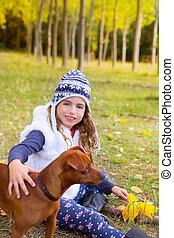 árbol, perro, otoño, álamo, bosque, niña, juego