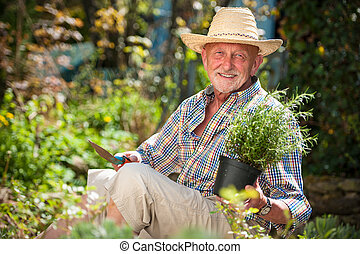 senior man in the garden