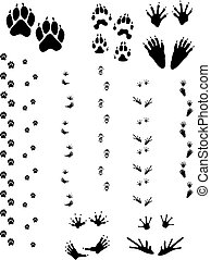 Animal Tracks 01 - Paw prints and tracks of five different...