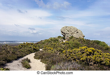 The Agglestone Rock on Godlingston Heath Studland in Dorset,...