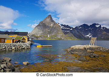 Sakrisoy - Scenic harbor in village of Sakrisoy on Lofoten...