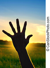 Hand On Sunset Background - Silhouette of a Hand against a...