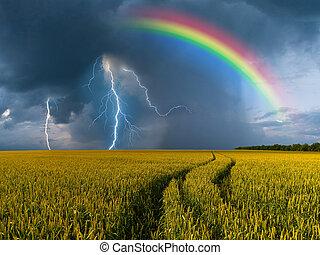 grande, trigo, campo, Thunderstorm