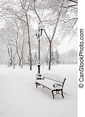 Winter in city park - Benches in the winter city park which...