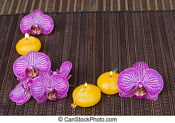 frame of spa flowers and candles - frame with orchid flowers...