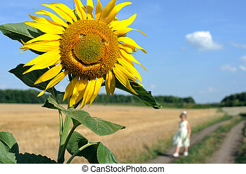 Smile - An image of a nice yellow sunflower smiling