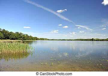 calm water of lake, woods on other side and blue sky....