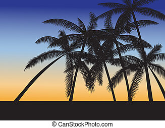 Tropical beach with palms at sunset