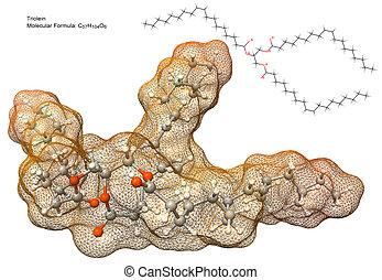 triglyceride molecule - 3d model of triolein molecule,...
