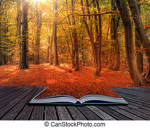 Vibrant Autumn Fall forest landscape image in pages of book