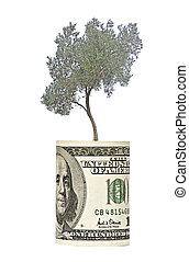 Olive tree growing from dollar bill