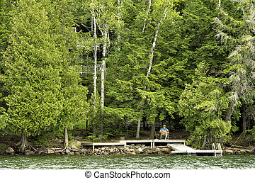 cottage inside the forest of haliburton - Image of cottage...