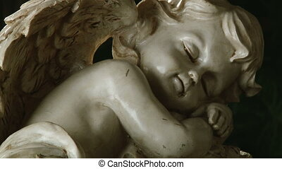 Sleeping angel, close up