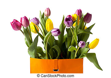 close up image of colorful tulips - Detailed shot of...