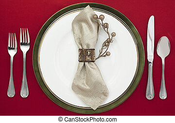 dishware with a ring table napkin - Horizontal image of...