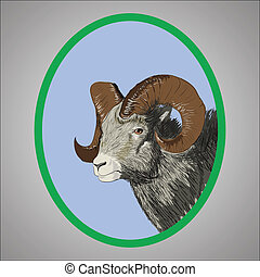 ram - colorful illustration with ram for your design