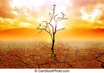 Hope - Illustration of a dried tree on dry land