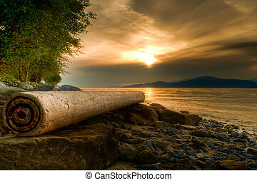 Log on Rocky Shore With Warm Sunset - Along the rocky shores...