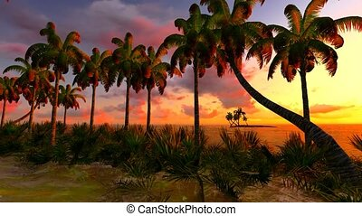 Awesome sunset on Hawaii - tropical paradise
